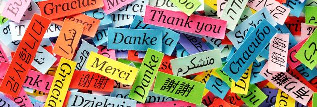 yazılı tercüme, yazılı tercüme kaynak dil, yazılı tercümede kaynak dili bilme