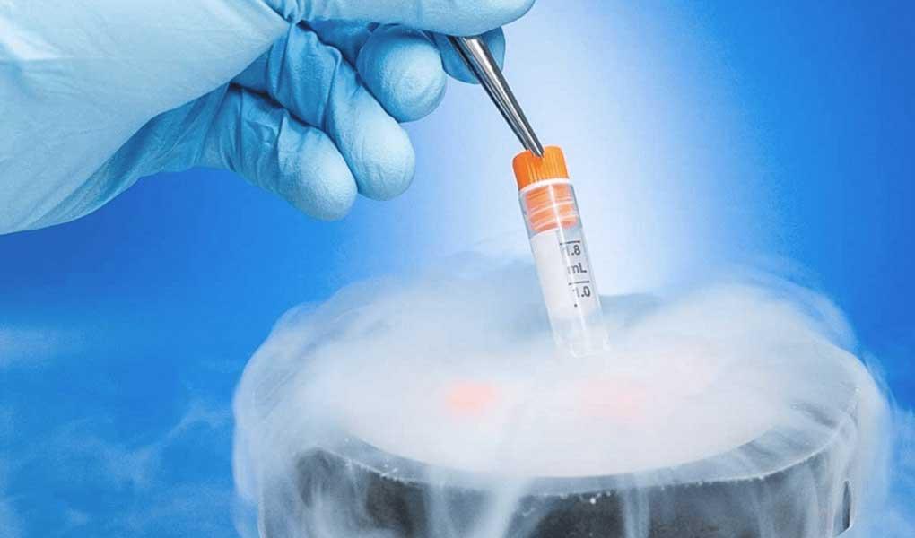 embriyo tranferi, embriyo tranferi nasıl yapılır, embriyo tranferi ne demek